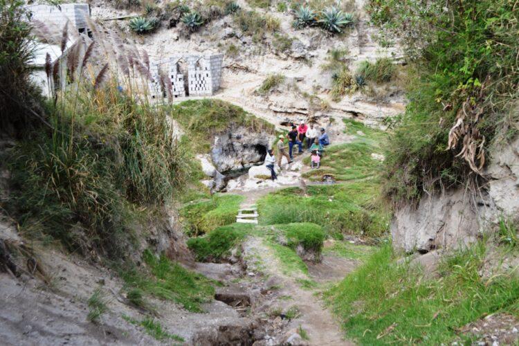 CATEQUILLA: UN TESORO NATURAL Y ANCESTRAL